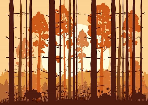 Forêt, coucher de soleil, montagnes, silhouettes de pins, sapins