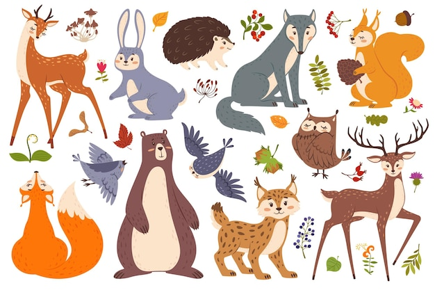 Forêt faune animaux oiseaux mignon bois cerf renard ours écureuil hérisson loup lapin ensemble de vecteurs