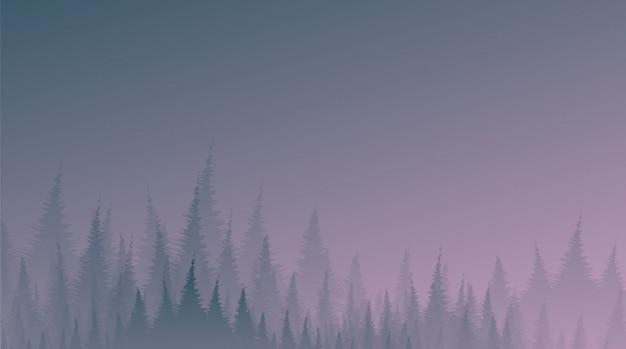Forêt de pins brumeux et brumeux de nuit, fond de paysage