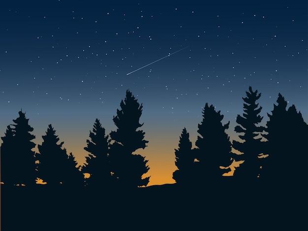 Forêt de pins et paysage de ciel étoilé