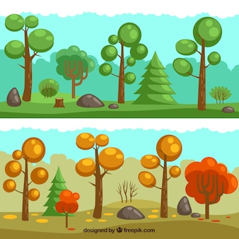 Forêt saisonnière