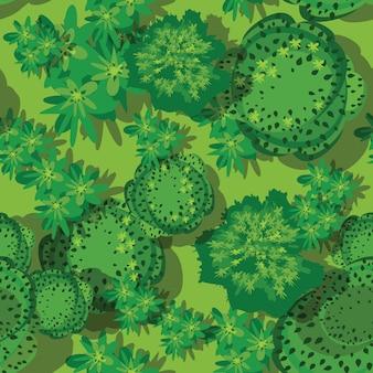 Forêt sans soudure vue de dessus