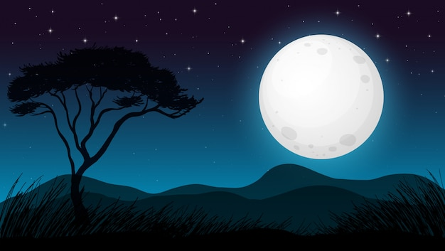 Forêt de savane dans la nuit noire