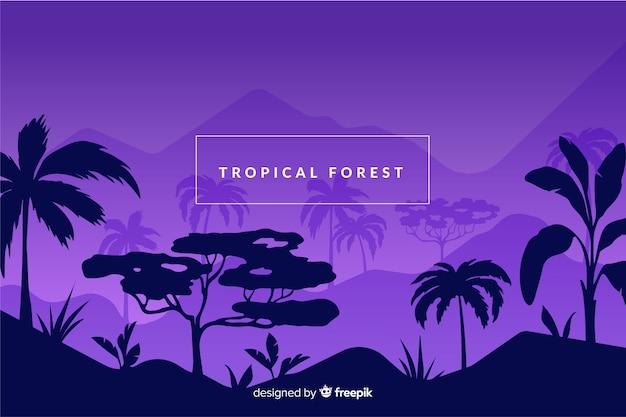 Forêt tropicale au fond de la nuit