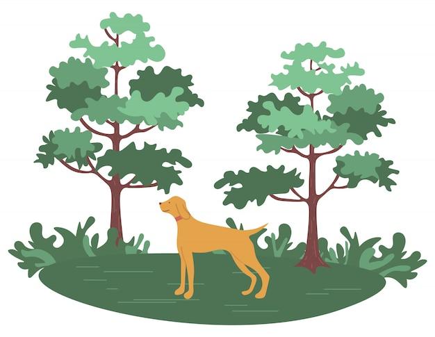 Forêt verte avec arbres et arbustes et chien de chasse
