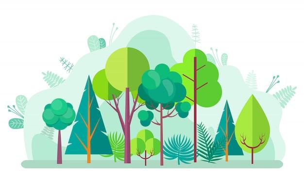 Forêt verte avec arbres, buissons, sapins et bouleaux