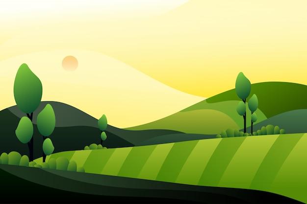 Forêt verte avec fond de montagne en soirée