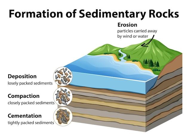 Formation de roches sédimentaires
