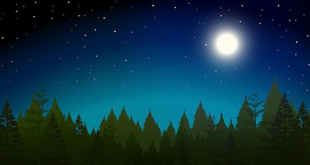 Forrest dans la nuit scène