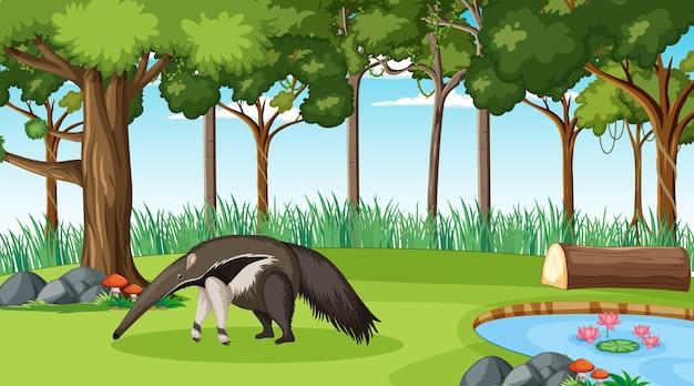 Un fourmilier en scène de forêt avec de nombreux arbres