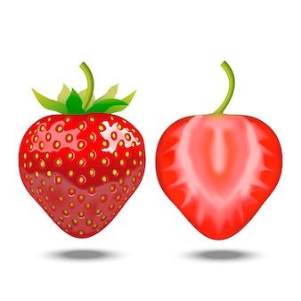 Fraise entière et demi détaillée réaliste délicieux dessert de fruits frais nourriture naturelle savoureuse. illustration vectorielle