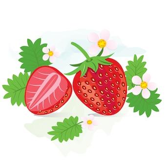 Fraise rouge frais