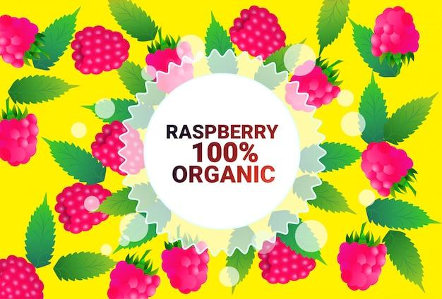 Framboise fruits cercle coloré copie espace organique sur fond de modèle de fruits frais mode de vie sain ou concept de régime