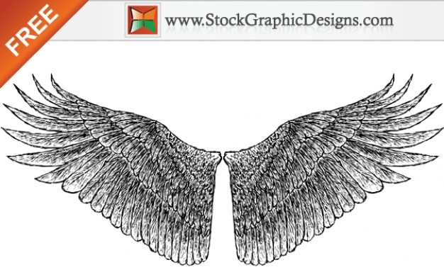 Free hand drawn vector ailes