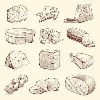 Fromage dessiné à la main. différents types de fromages.