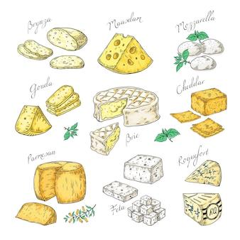 Fromage dessiné à la main. doodle apéritifs et tranches de nourriture, différents types de fromage