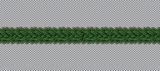 Frontière avec des branches d'arbres de noël