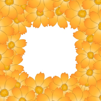 Frontière de fleur de cosmos jaune orange