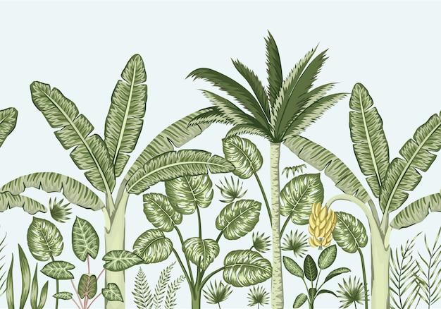 Frontière sans soudure de vecteur avec des plantes tropicales