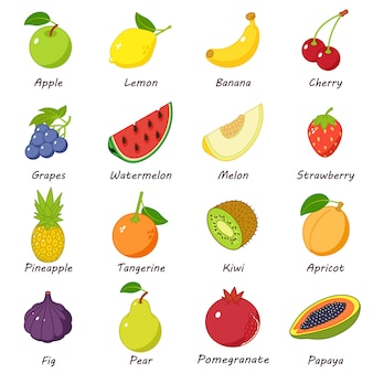 Fruit food icons set. illustration isométrique de 16 icônes vectorielles de nourriture de fruits pour le web