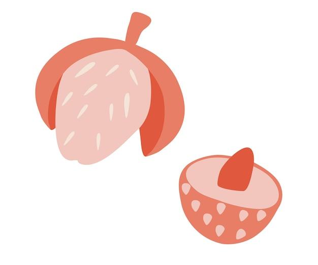 Fruit de litchi. fruits tropicaux d'été pour un mode de vie sain. nourriture d'été. illustration vectorielle plane.