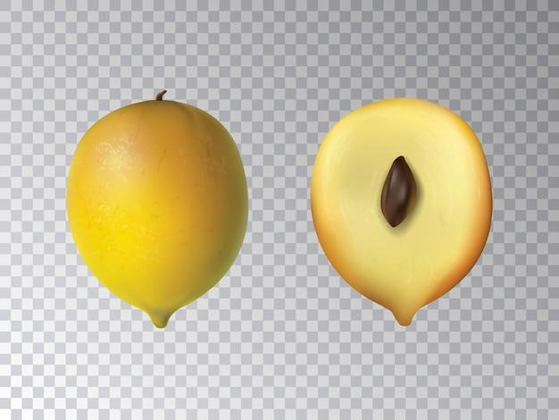 Fruit de vecteur 3d réaliste