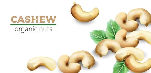 Fruits d'aquarelle de noix de cajou avec des feuilles de menthe