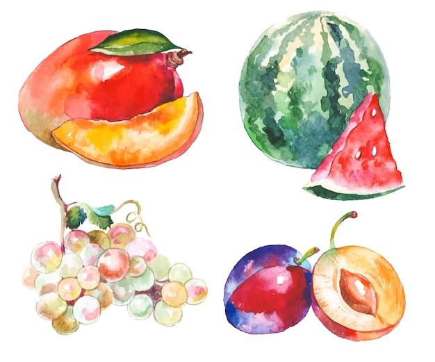 Fruits aquarelles isolés sur blanc