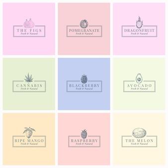 Fruits beries et herbes symboles de signes abstraits ou modèle de logo