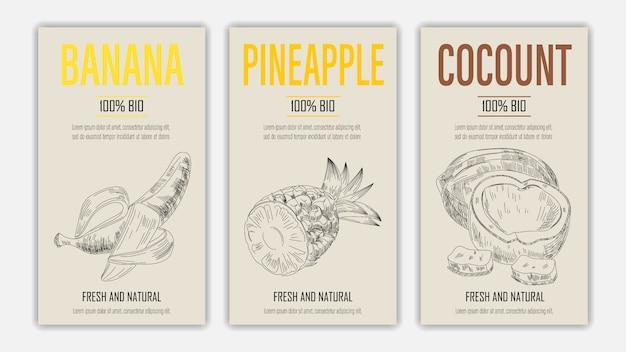 Fruits dessinés à la main d'affiches de banane, d'ananas et de noix de coco. concept d'aliments sains de style vintage.