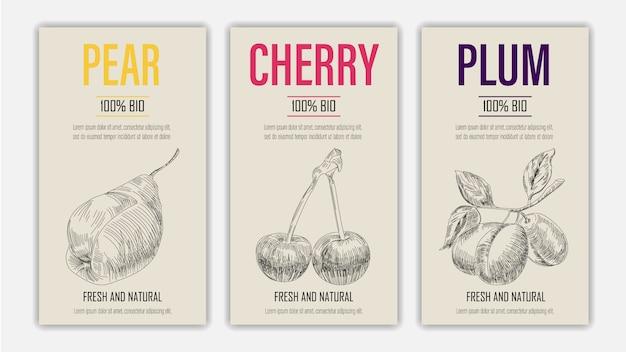 Fruits dessinés à la main d'affiches de poire, de cerise et de prune. concept d'aliments sains de style vintage.