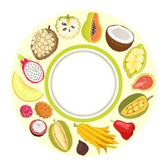 Fruits exotiques, vecteur, pomme, papaye, citron, durian