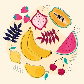 Fruits et feuilles