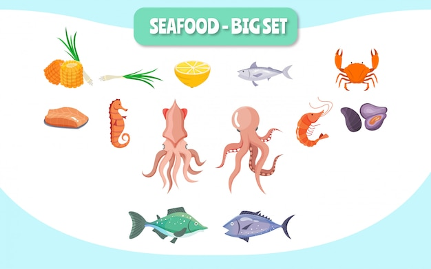 Fruits de mer big set illustration concept food