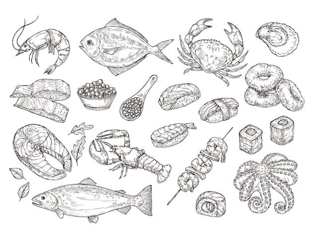 Fruits de mer dessinés à la main. calmar huître naturel, caviar. ingrédients de repas japonais