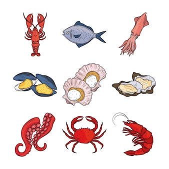Fruits de mer homard calmar poisson crabe poulpe huîtres menu gourmet frais clipart ensemble