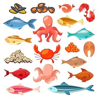 Fruits de mer et poissons isolés sur blanc