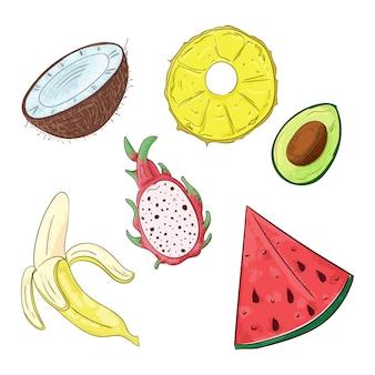 Fruits tropicaux coupés en morceaux au trait.