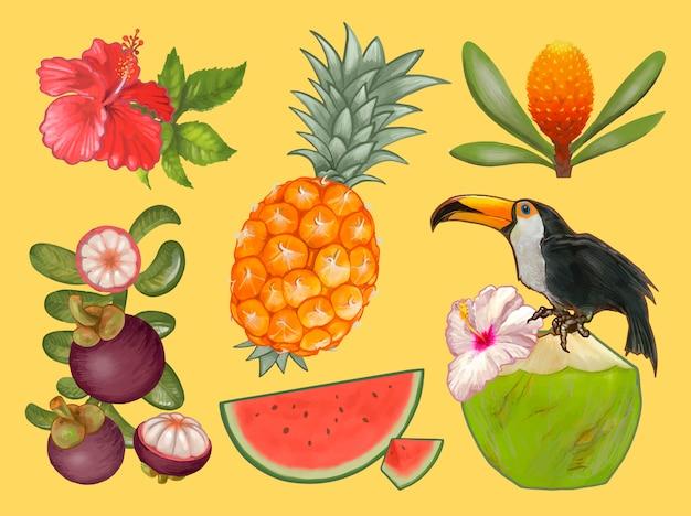 Fruits tropicaux et illustration de fleurs
