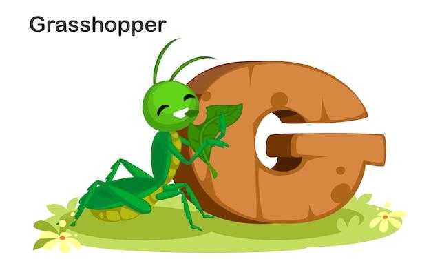 G pour sauterelle