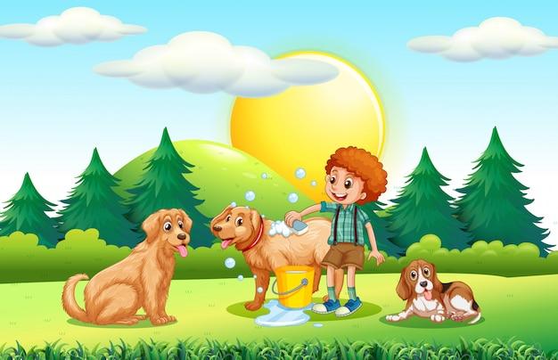 Garçon donnant un bain au chien dans le parc