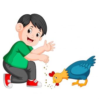 Garçon donne des graines au poulet manger