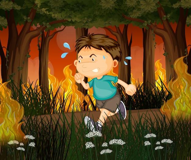 Un garçon s'enfuit de la forêt