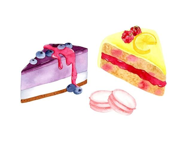 Gâteau au fromage aux myrtilles gâteau au citron macarons aux fraises éléments d'aquarelle