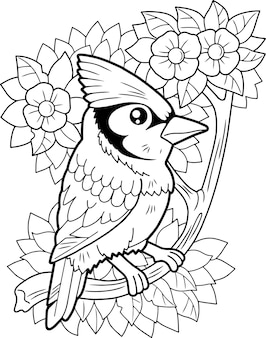 Geai bleu oiseau