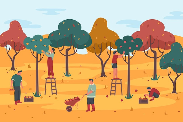 Les gens choisissent la récolte dans un fond de vecteur de verger