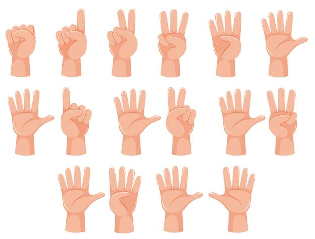 Geste de la main et nombre