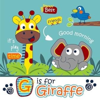 Girafe et éléphant