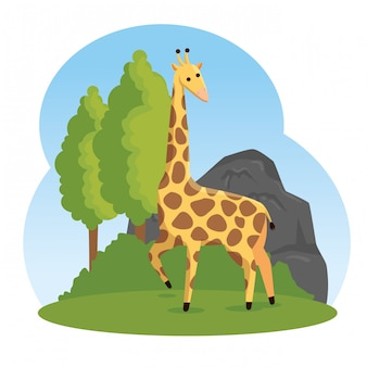 Girafe mignonne réserve d'animaux sauvages