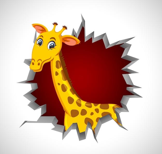Girafe mignonne sortant du mur fissuré